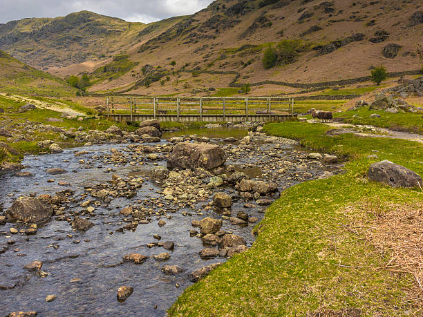 English County Landschaft-weit Easedale Gill Ft.  Herdwickschaf – Foto