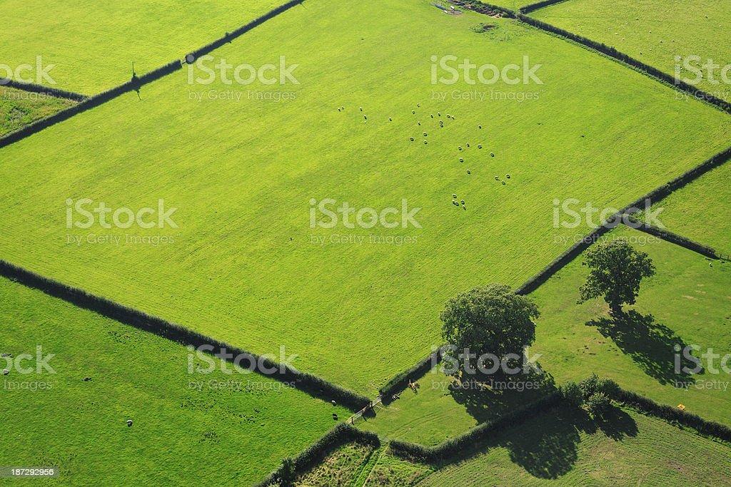 English farmland stock photo