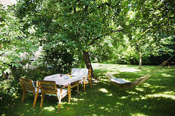 english garden in summer - skuggig bildbanksfoton och bilder
