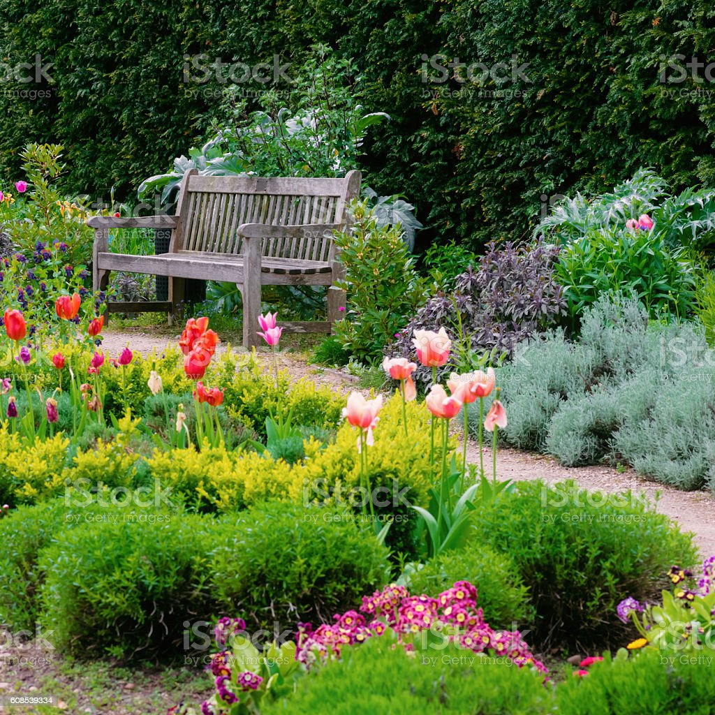 English garden with walk path leading empty bench square composition stock photo
