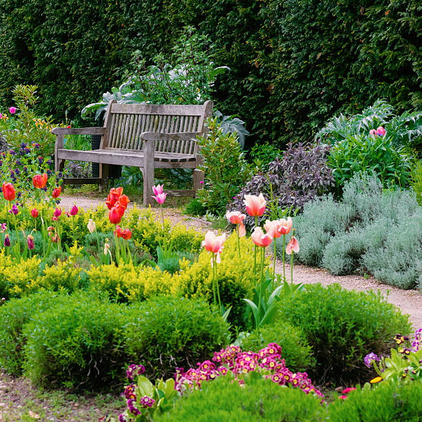 english garden with walk path leading empty bench square composition - banc photos et images de collection