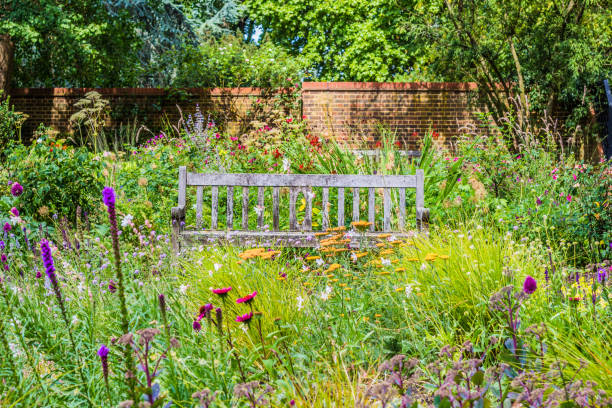 English Garden with wooden bench and wildflowers Lovely English Garden on a summer day with a wooden bench surrounded by wildflowers and trees wildflower stock pictures, royalty-free photos & images