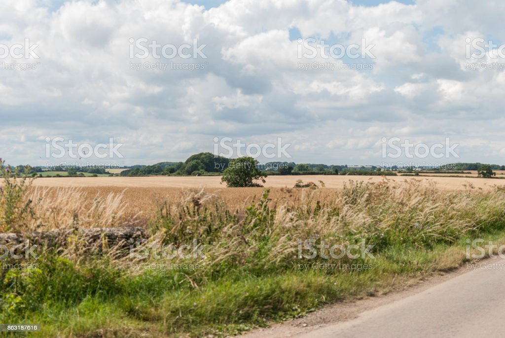English hay field with road stock photo