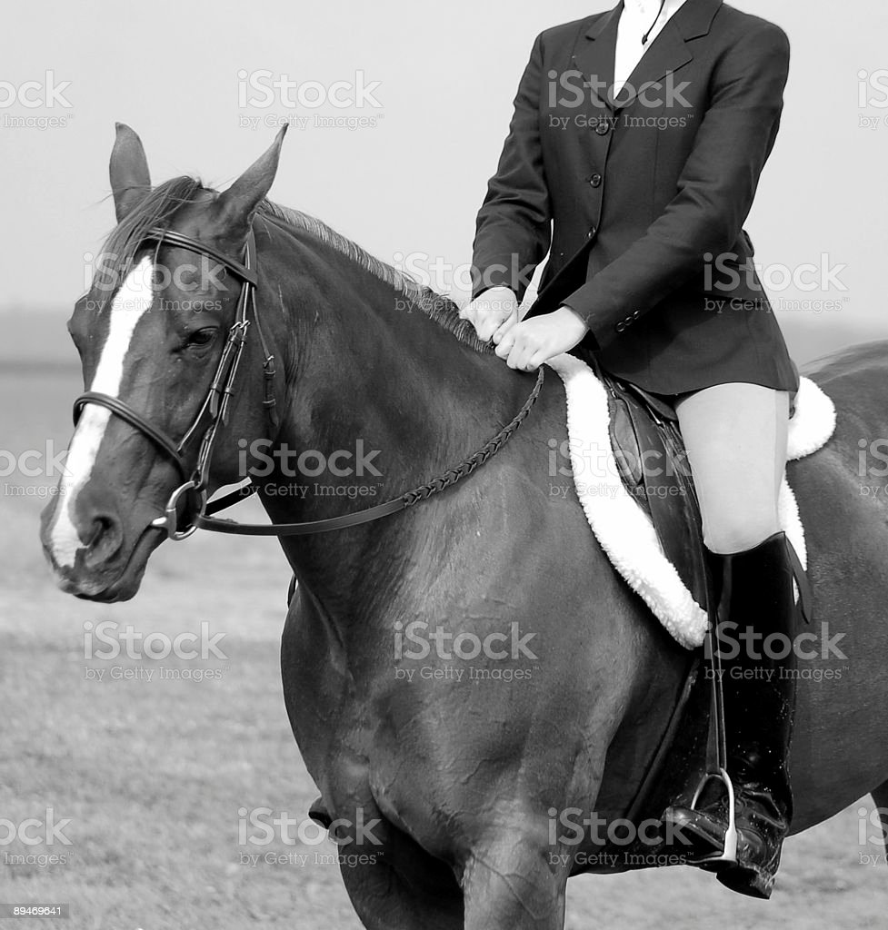 English Horseback rider with Perfect Posture stock photo