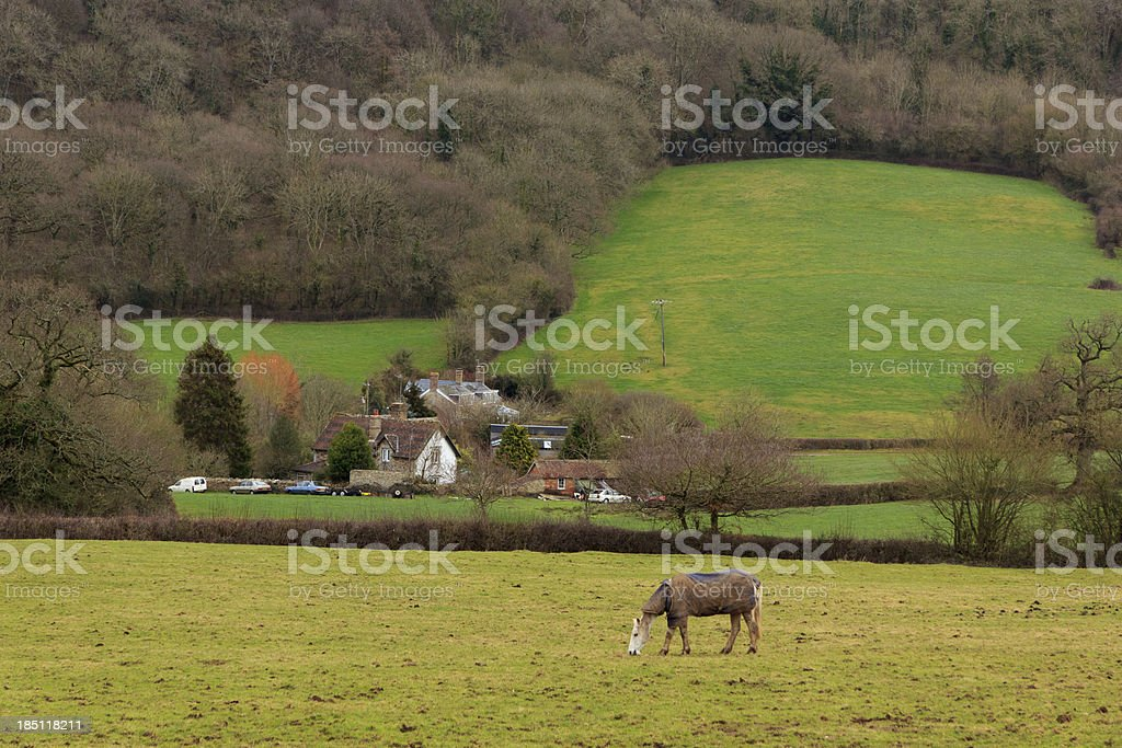 English landscape in the Blackdown Hills, Somerset stock photo