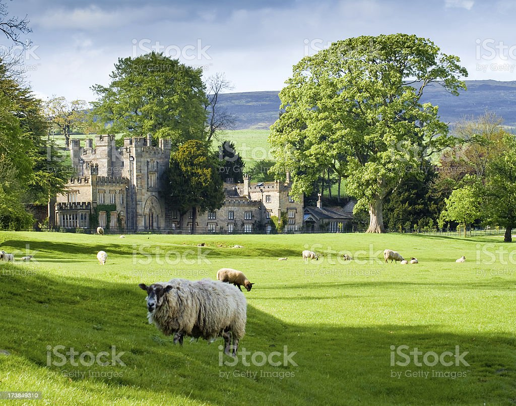 English Manor with Sheep and Yorkshire Moors stock photo