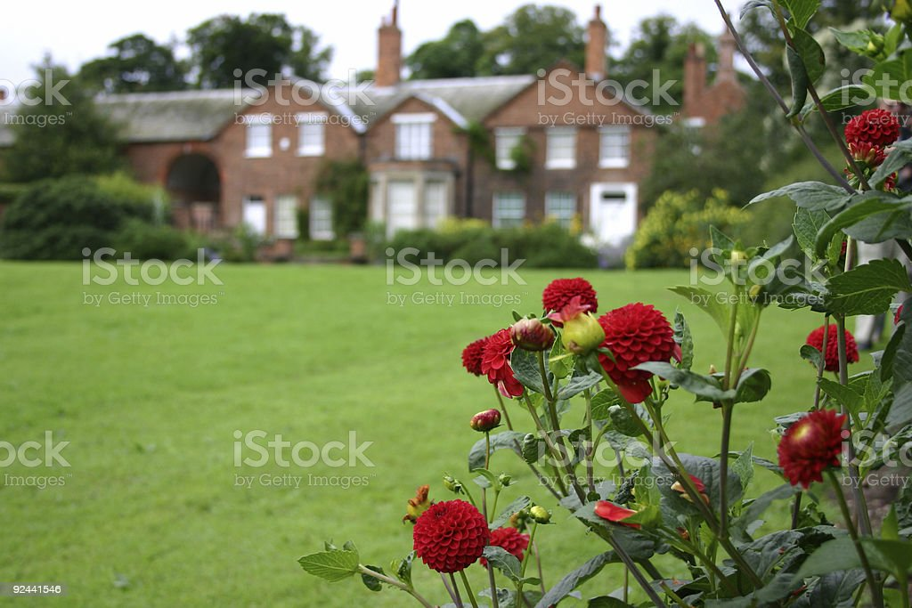 English mansion framed by red dahlias royalty-free stock photo