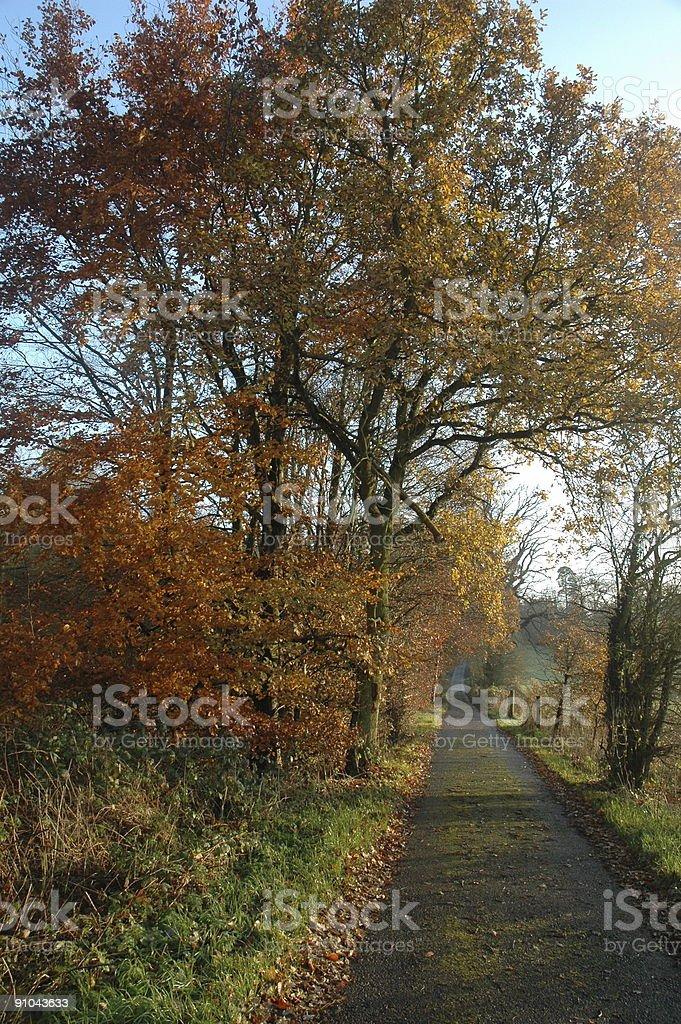 English path stock photo