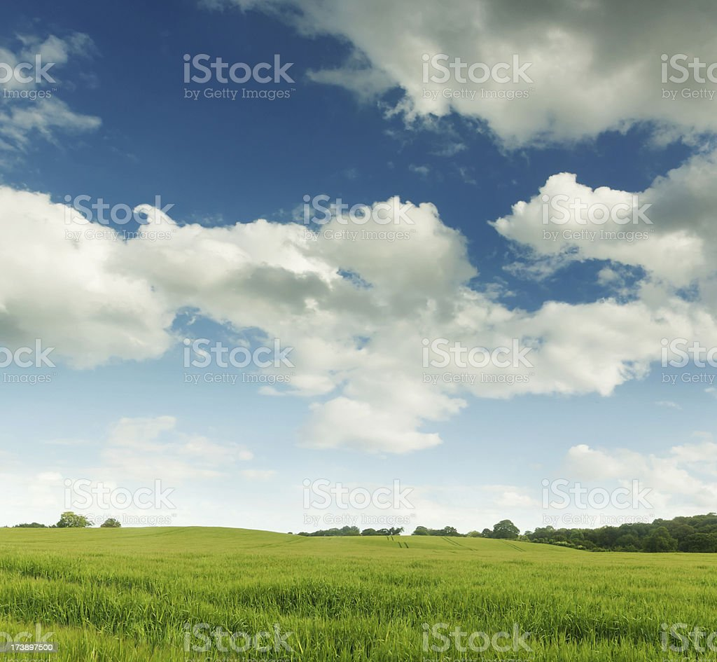 English Rolling Hills royalty-free stock photo