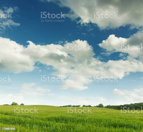 Photo of English Rolling Hills