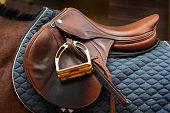 'A nice, shiny, brown leather english saddle on horseback. Canon Eos 1D Mark III.'