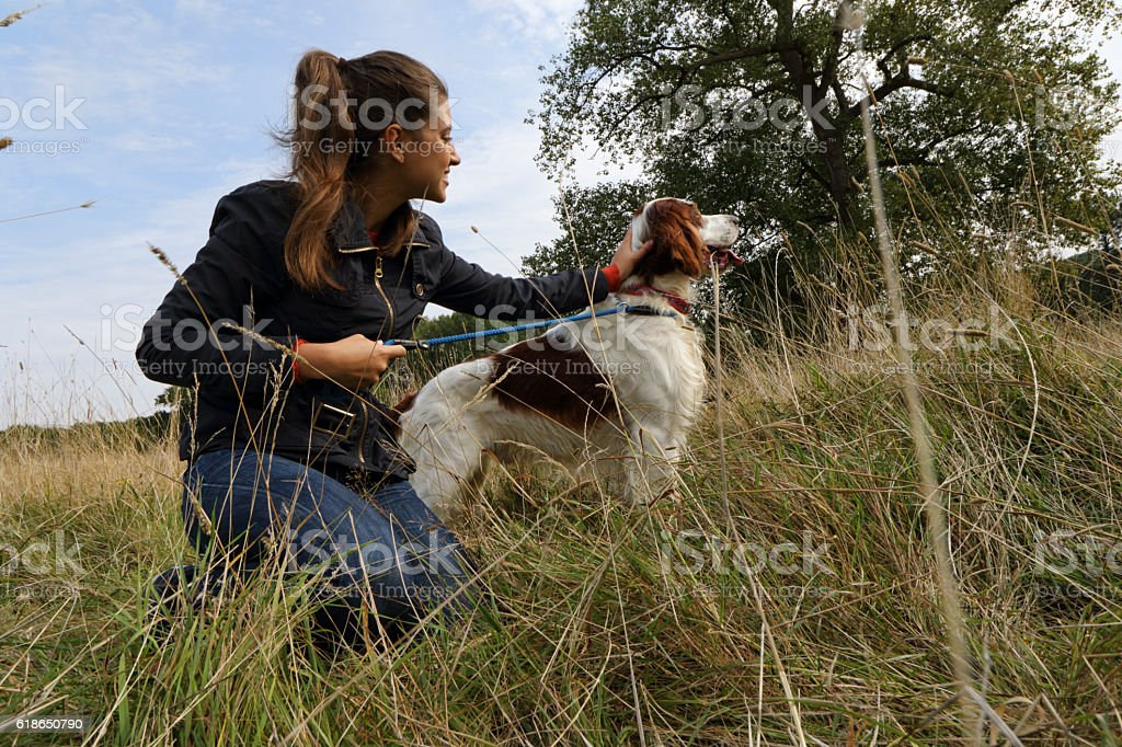 Liver belton English setter on lead with Russian outdoor girl stock photo