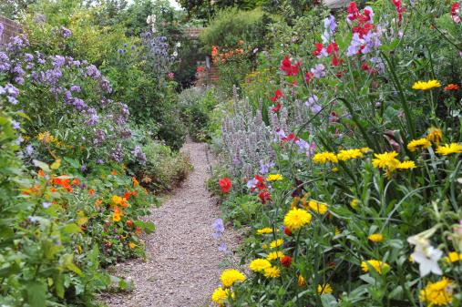 A beautiful English Walled Garden in AugustUK
