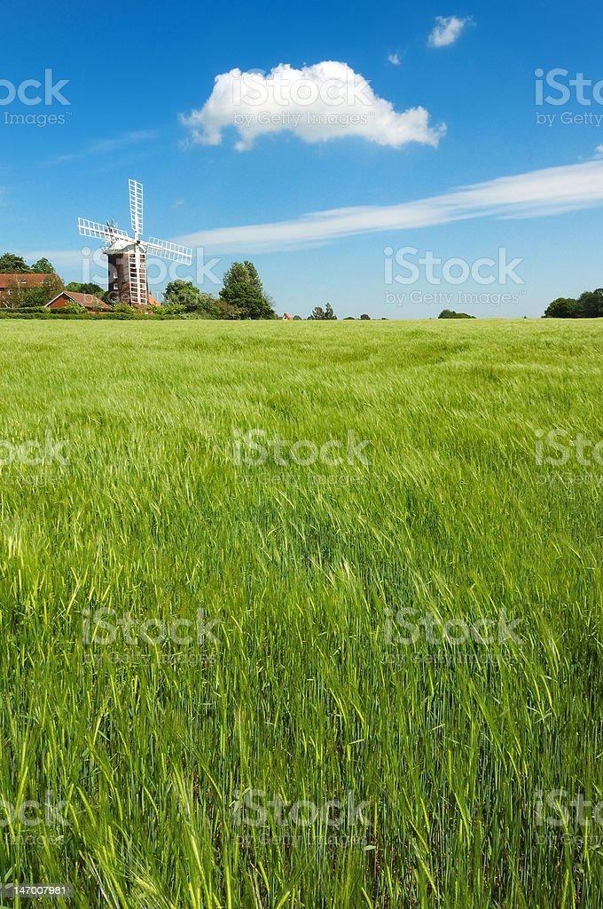 English Windmill royalty-free stock photo