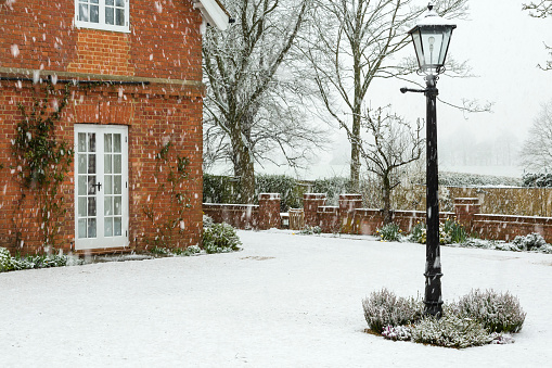 English winter garden in snow, UK