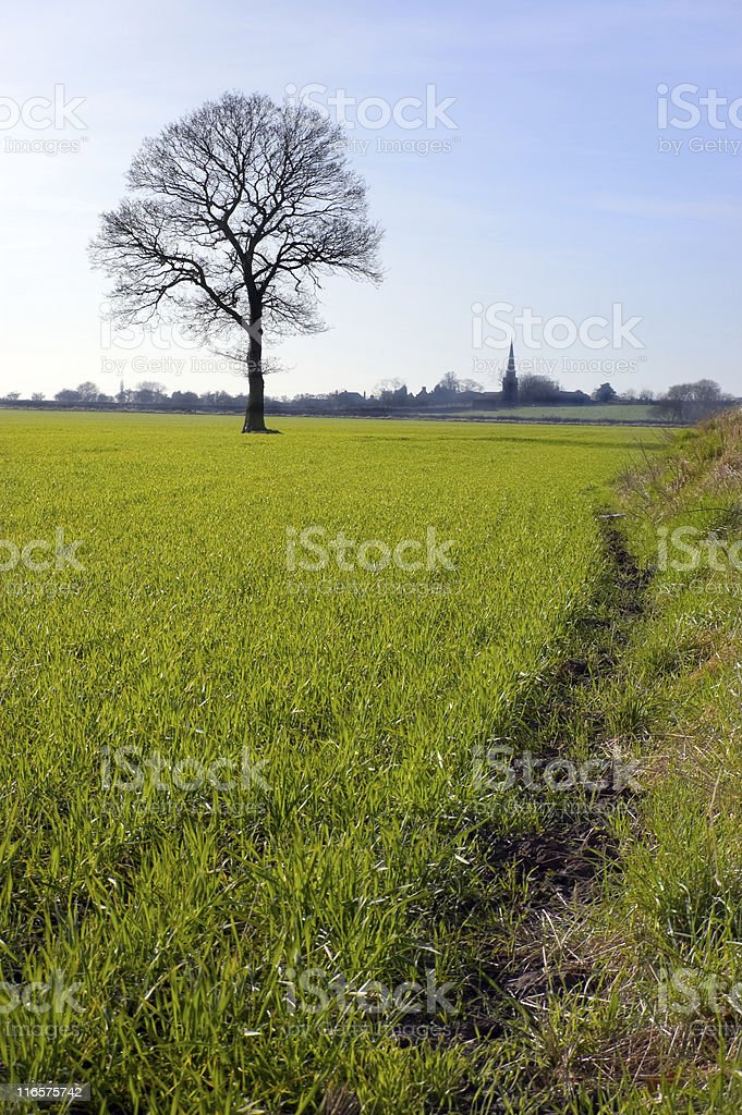 English Winter Landscape stock photo