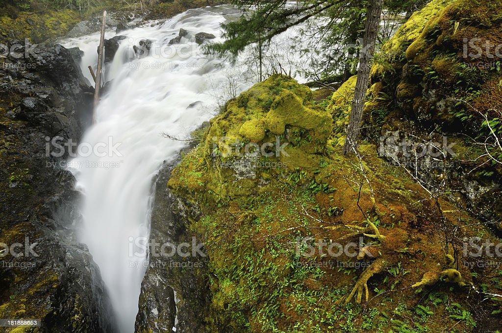 Englishman River Falls in Vancouver Island, Canada stock photo