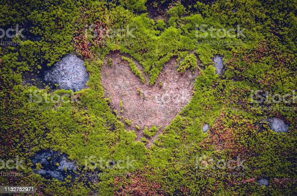 Photo of Engraved heart shaped sign on a stone, covered by moss