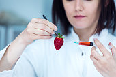 Enhancing a Natural Strawberry DNA For a More Plastic Look on the Market