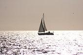 Disfrutar de una relajada singladura. En una mar llana y tranquila con un sol poniente que anuncia la entrada de la noche