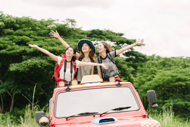 enjoy nature during vacation travel trip in forest - asian travel in car stock photos and pictures