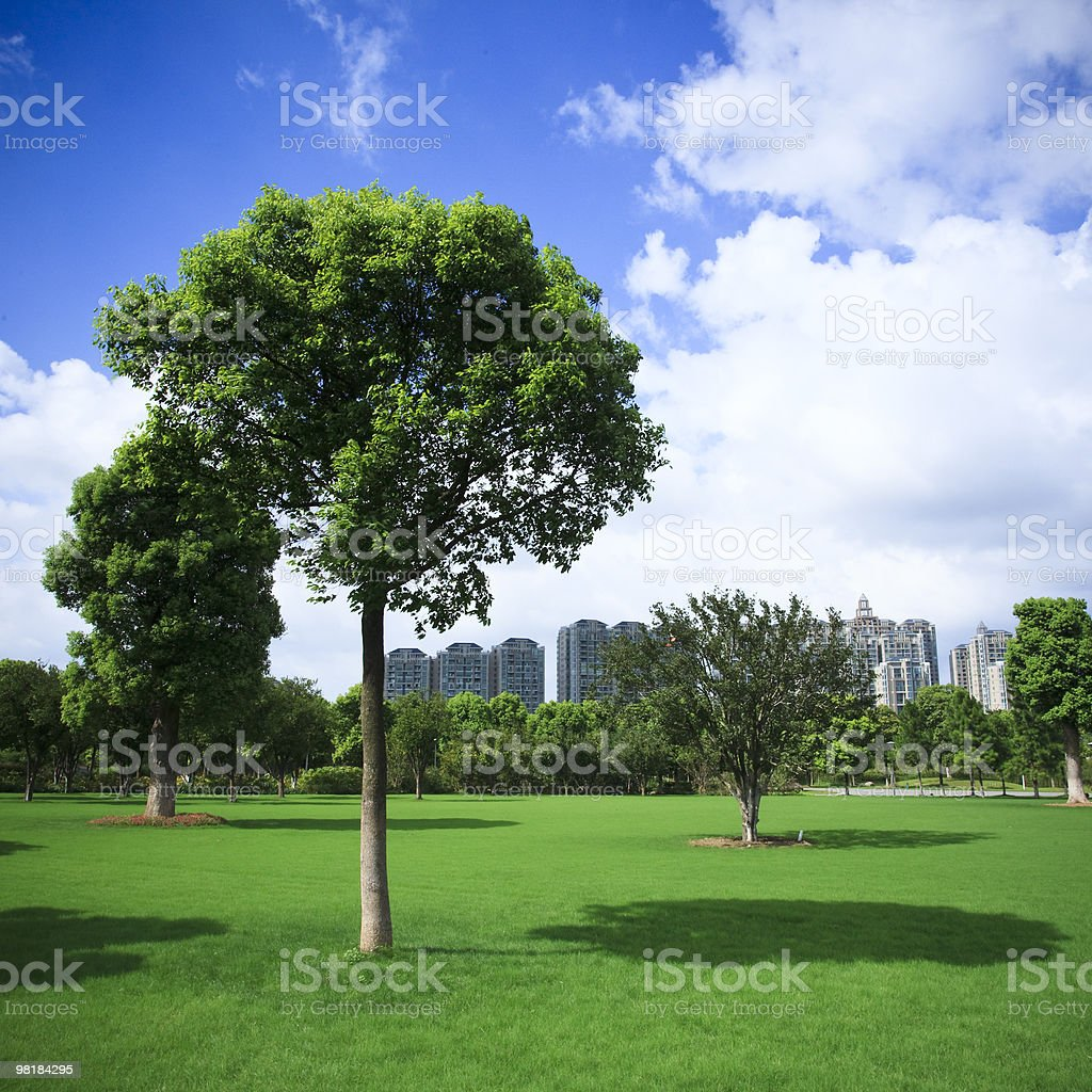 Enjoy the cleanliness and green pasture of our city royalty-free stock photo