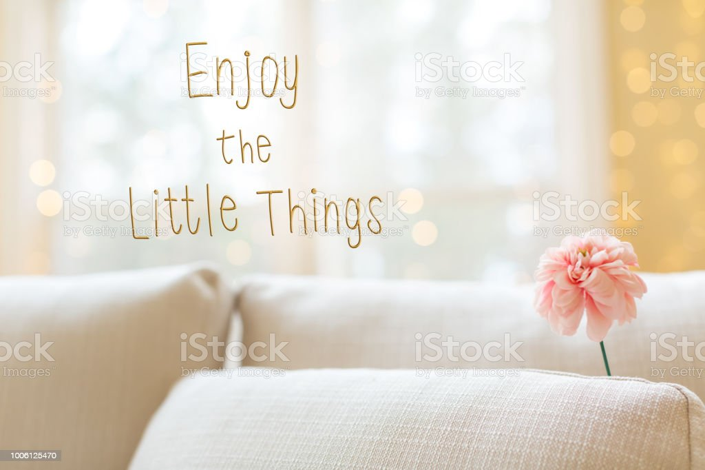 Enjoy The Little Things message with flower in interior room sof