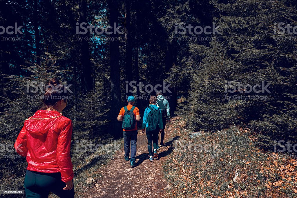 enjoy the nature walks photo libre de droits