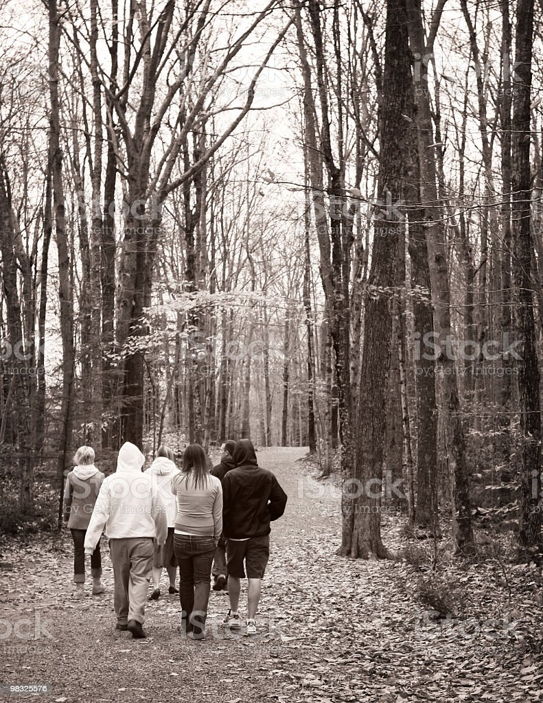 산책길은 in the woods royalty-free 스톡 사진
