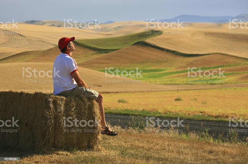 Enjoying a Country Morning royalty-free stock photo