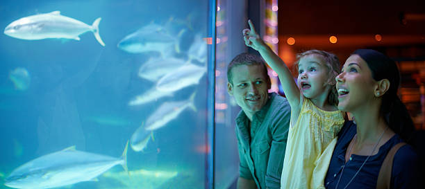 Enjoying a day of family, fun and fish Shot of a young family enjoying a day at the aquariumhttp://195.154.178.81/DATA/i_collage/pi/shoots/783341.jpg aquarium stock pictures, royalty-free photos & images