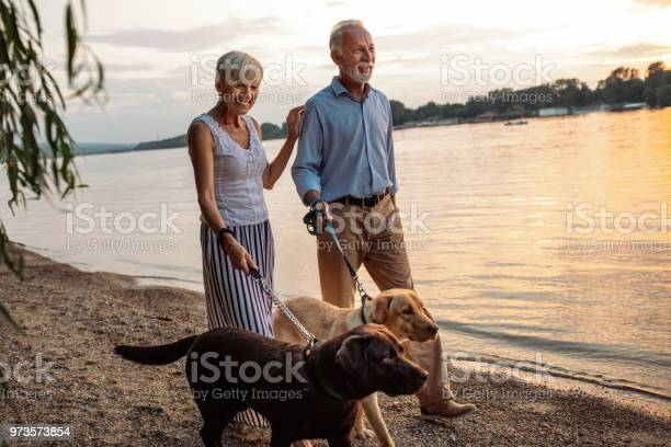 Enjoying a day out with their dogs picture id973573854?b=1&k=6&m=973573854&s=612x612&h=9xodgzo dhdwkoha2g55fubkxydob5fk905 6mtdypg=