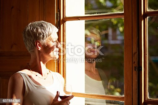 638765726 istock photo Enjoying a glass of wine with the view 637884786