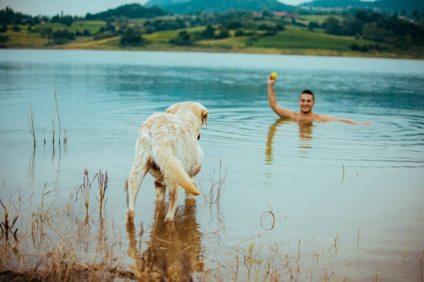 Enjoying a summer day with your best friend picture id1133073436?b=1&k=6&m=1133073436&s=612x612&w=0&h=m9emob8stranmwcza4ooxtncktznwkb4udiamoz9ucu=
