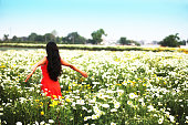 Young woman standing in chrysanthemum field and enjoying fresh air outdoors.
