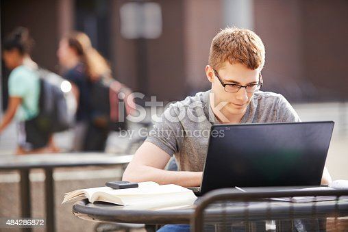 istock Enjoying his studies 484286872