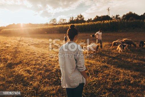 Young woman having a walk through the farm