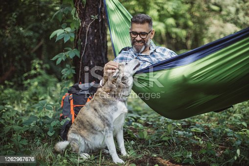 Mature man at forest. Sitting at hammock and enjoying in nature with his dog.
