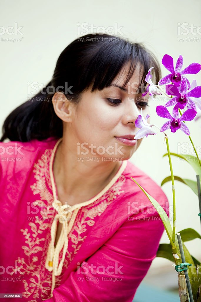 Enjoying Orchids royalty-free stock photo