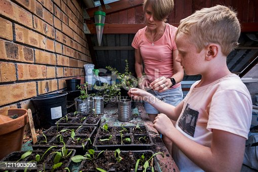istock Enjoying planting out some water wise plants 1211903090