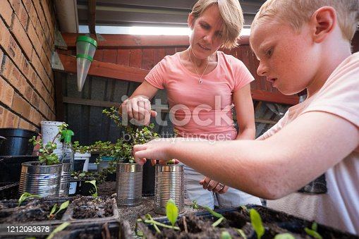istock Enjoying planting out some water wise plants 1212093378