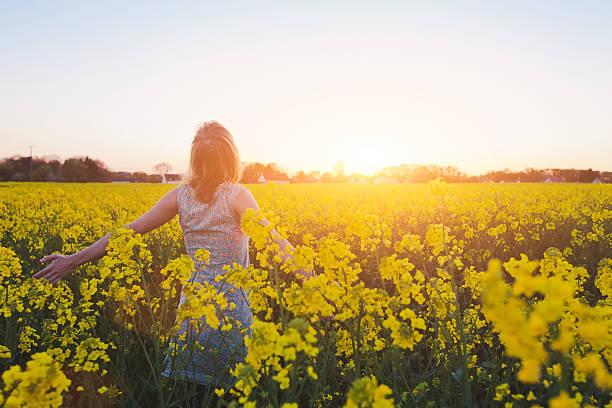 desfrutando de verão - mulher flores - fotografias e filmes do acervo