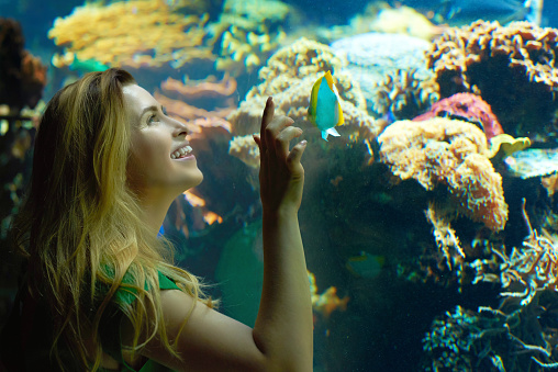 istock enjoying the fishes from aquarium 494350654