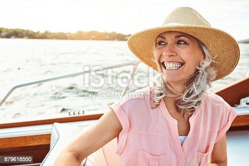 879618770 istock photo Enjoying the journey of retirement 879618550