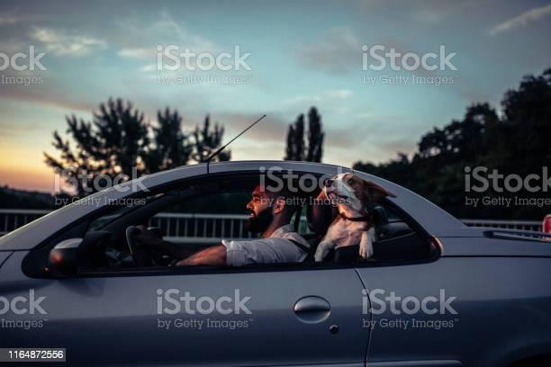 Enjoying the ride picture id1164872556?b=1&k=6&m=1164872556&s=612x612&h=7gp bgr91pffw2t0zljzu6pafmc4g jc rfzkmsuddo=