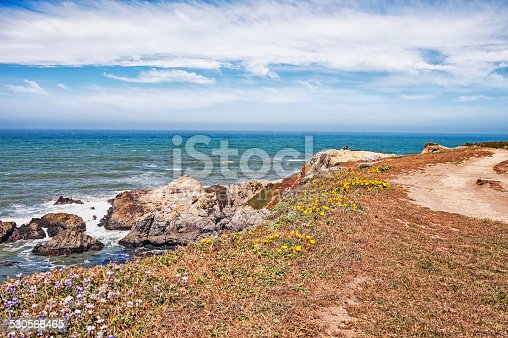 This couple seem to be enjoying the delightful views of the Pacific Coastline at Bodega Bay in Northern California. The colors of the flowers and ice plants and the beautiful sky makes this shot very special. Camera is Nikon D3.