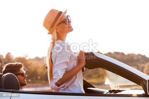481388538 istock photo Enjoying the sun and fresh air. 481358952