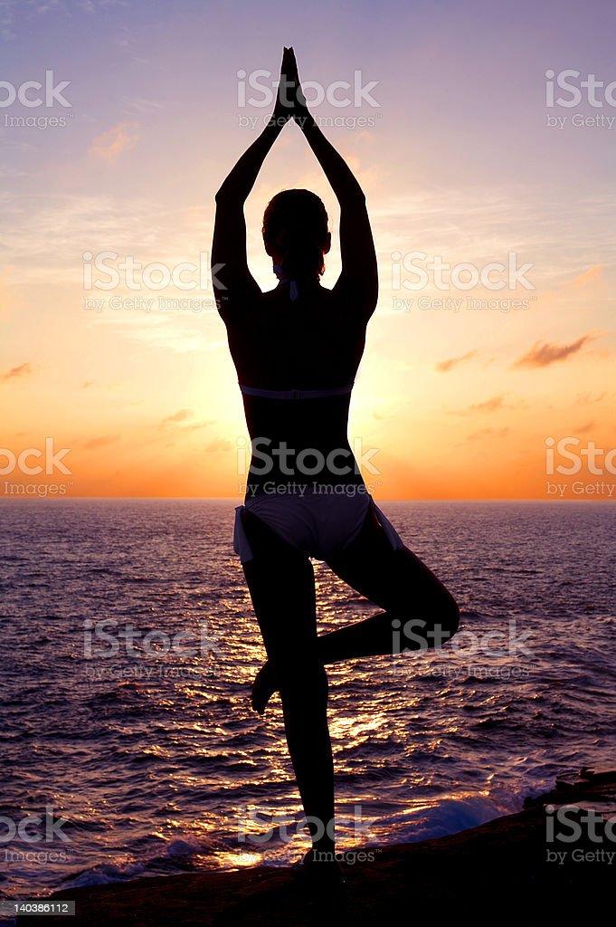 Enjoying the sunset royalty-free stock photo