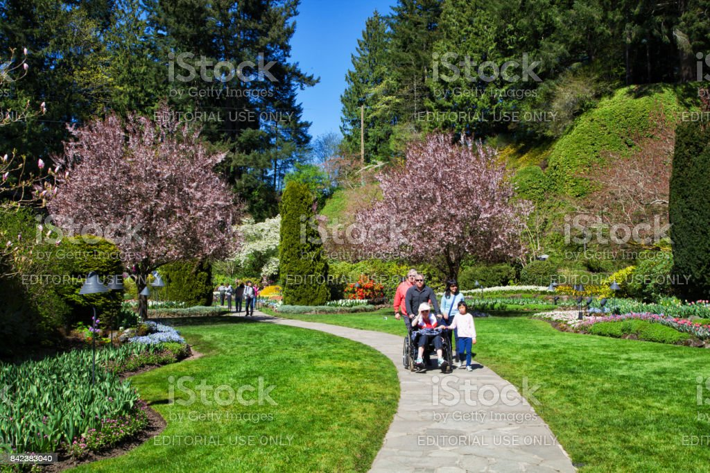 Enjoying the view of butchart gardens victoria bc canada stock photo enjoying the view of butchart gardens victoria bc canada royalty free stock thecheapjerseys