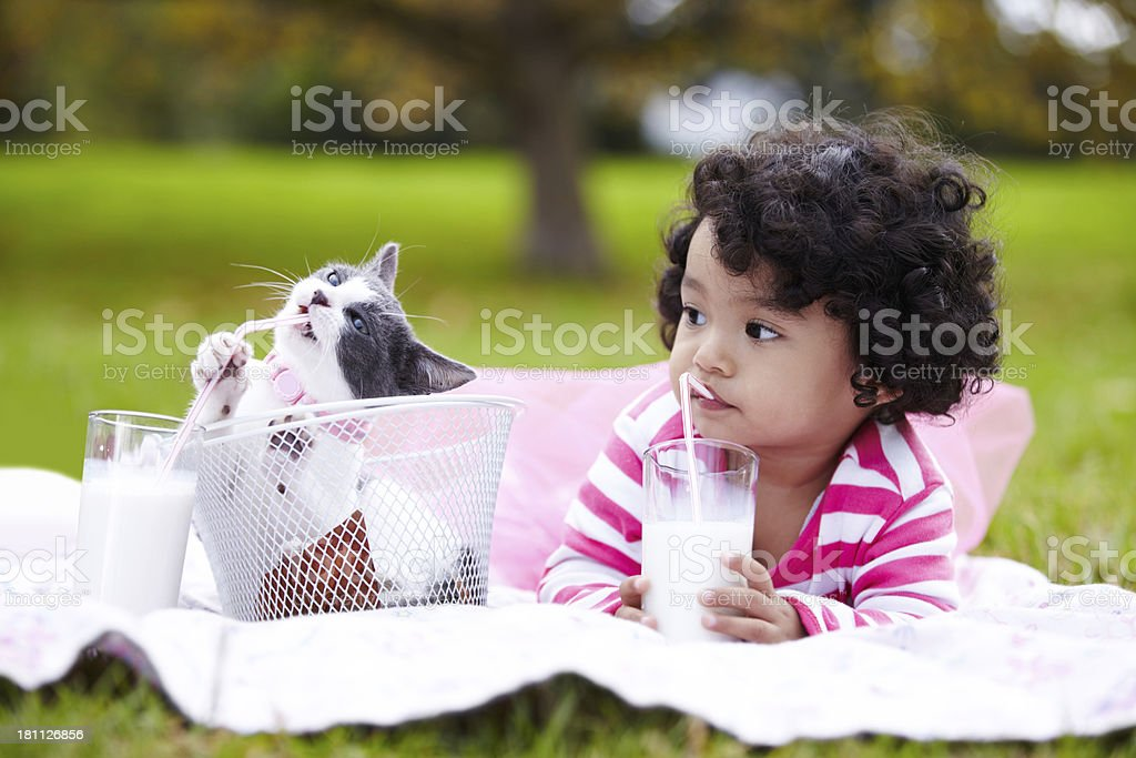 Enjoying their milk together royalty-free stock photo